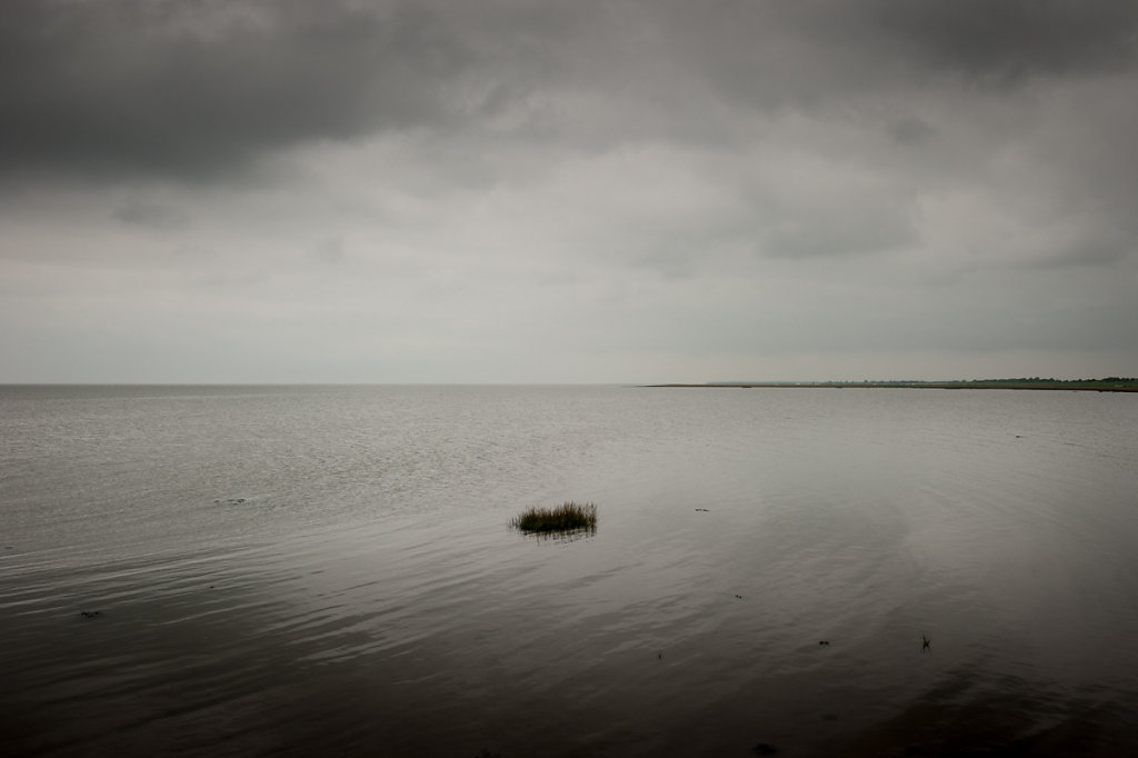 Horizon 11