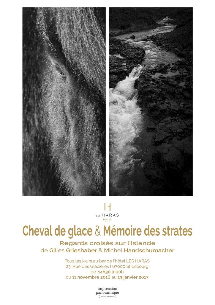 Affiche de l'exposition à l'Hôtel des Haras / Strasbourg