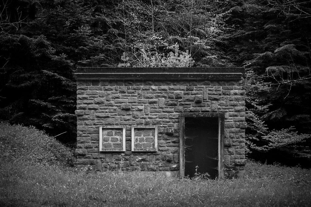Architecture forestière