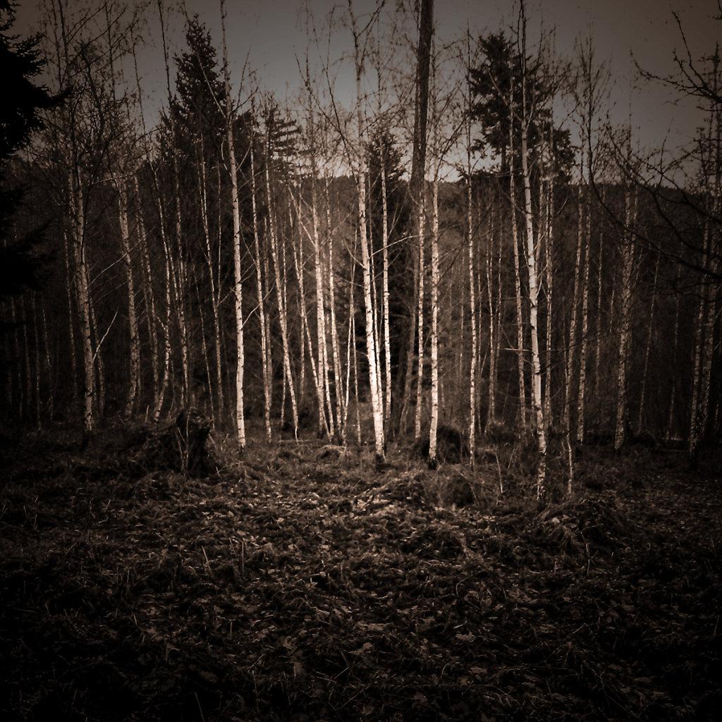 """""""Roter Berg"""", Bruno Fleutelot.2015 - Couverture non retenue 05"""