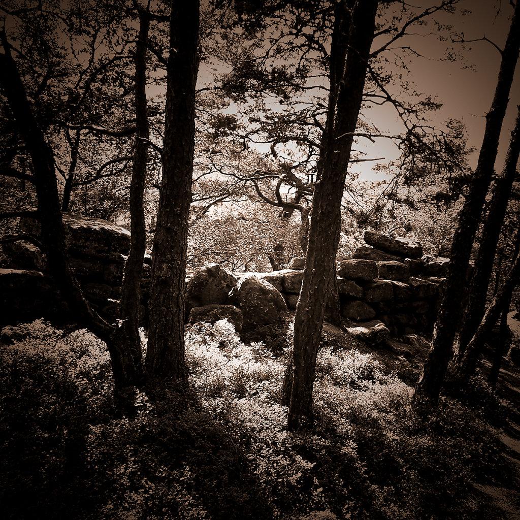 """""""Roter Berg"""", Bruno Fleutelot.2015 - Couverture non retenue 06"""