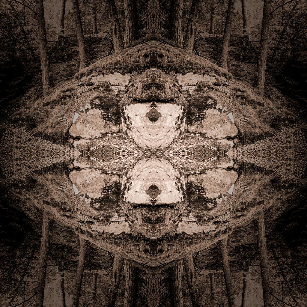 """""""Roter Berg"""", Bruno Fleutelot.2015 - Etiquette CD"""