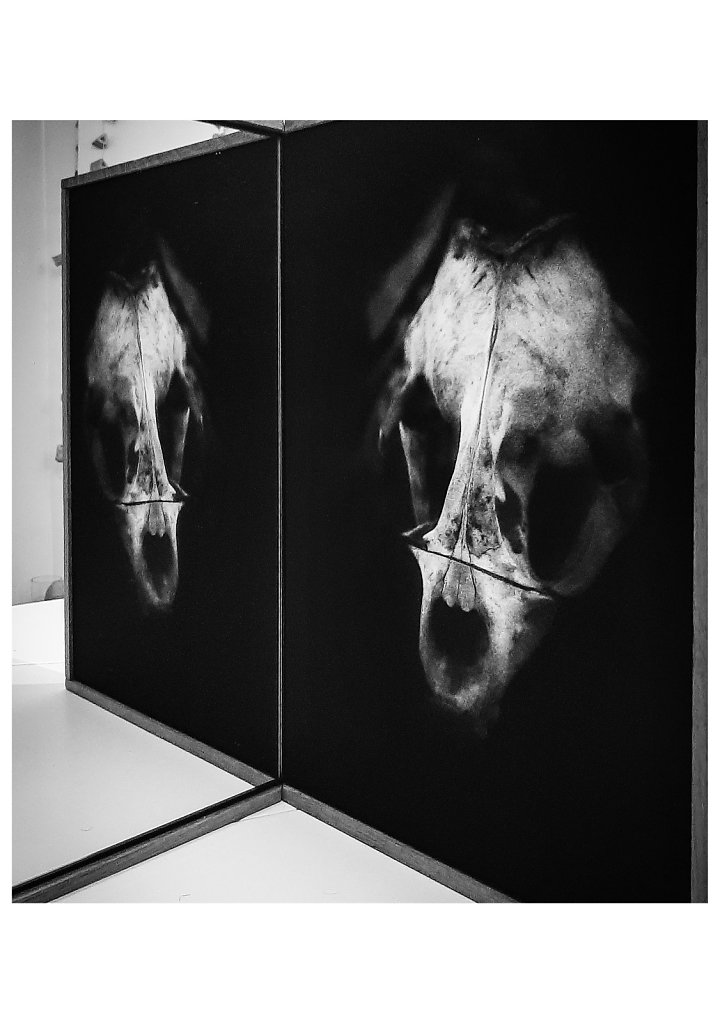 11 - Face to Face - Galerie Murmure 2020